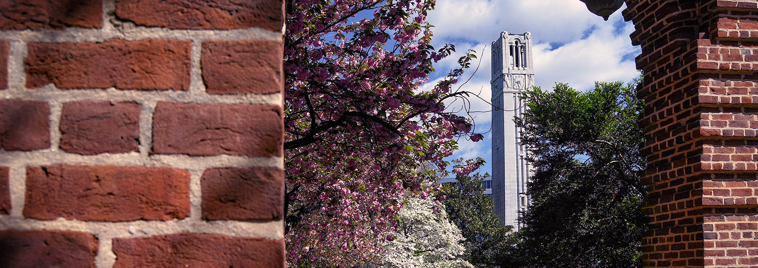 The NC State Belltower framed by the arches of Holladay Hall.