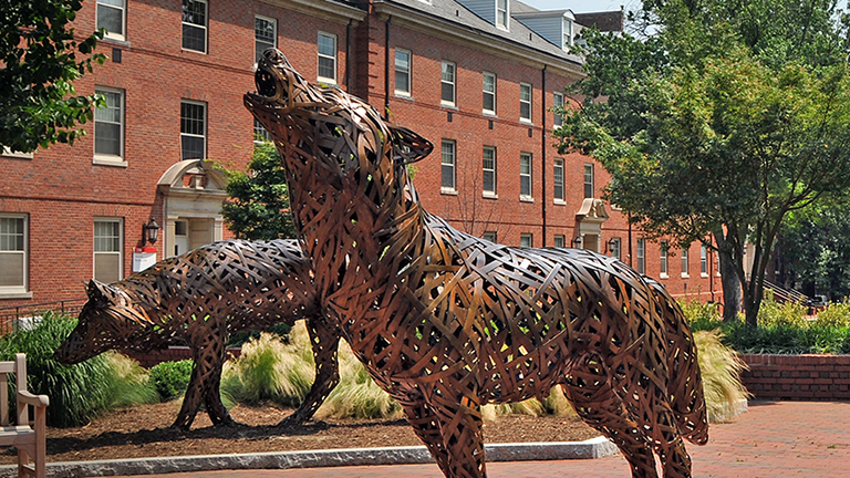 One of the wolves near the Talley Student Union.